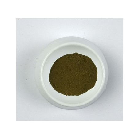 CLAVE PIGMENT 500G 0274 TERRE OMBRE  CHYPRE HG...SUP...