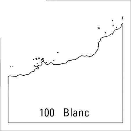 ECOLINE 490ML 100 BLANC