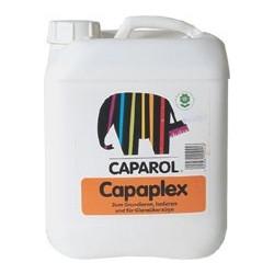 CAPAPLEX APPRET INC 5L