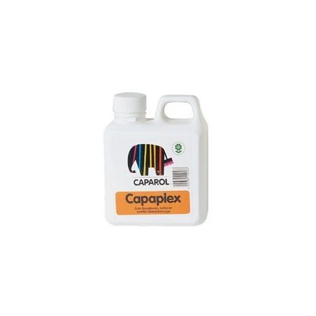 CAPAPLEX APPRET INC 1L