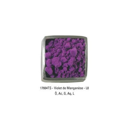 GUARDI PIGMENT 200G 17664 VIOLET MANGANESE